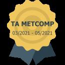 Transparent Alloys - METCOMP